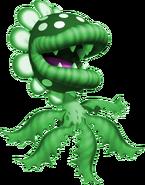 Spider Piranha