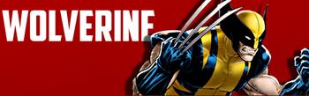 Wolverinemvc4
