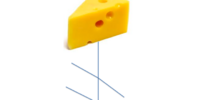 Cheese Cryptor (species)