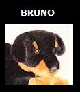 File:Bruno SSBET Logo.png