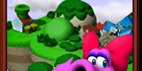 New Super Mario 64 3D/Episodes