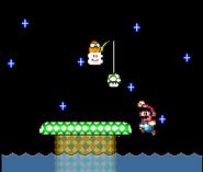 Mario 19