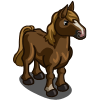 New Forest Pony-icon