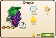 Grape-market info