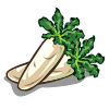 Chinese Daikon-icon