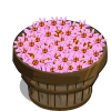 Pink Aster Bushel-icon