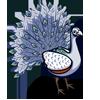 White Peacock-icon