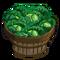 Kale Bushel-icon