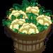 Cauliflower Bushel-icon