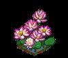 Perfect Lotus-icon