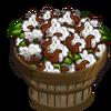 Australian Cotton Bushel-icon