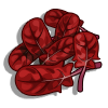 Red Spinach-icon