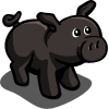 Black Pig-icon