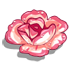 Candied Carnation-icon