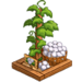 Cotton Plant-icon