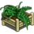 Tropical Planter-icon
