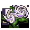 Spiral Flower-icon