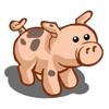 Ossabaw Pig-icon