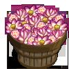 Lotus Bushel-icon
