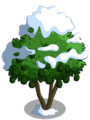 Avocado Tree8-icon.png