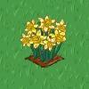 Perfect Daffodil-icon