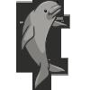 Finless Porpoise-icon