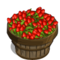 Red Goji Berry Bushel-icon