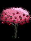 Cherry2-icon