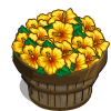 Yellow Hibiscus Bushel-icon