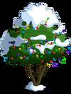 Avocado Tree9-icon