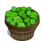Green Rose Bushel-icon