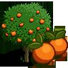 Orange Tree-icon