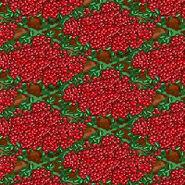 100PercentCranberries