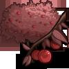 Cherry Plum Tree-icon