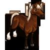 Quarter Horse-icon