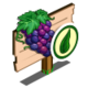 Organic Grape Mastery Sign-icon
