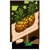 Australian Pineapple Mastery Sign-icon
