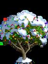Apricot Tree10-icon