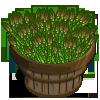 Asparagus Bushel-icon