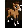 Buckskin Foal-icon