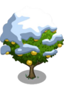 Asian Pear Tree8-icon.png