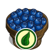 Organic Blueberry Bushel-icon