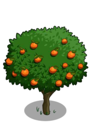 Orange2-icon