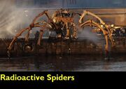 Radioactive Spiders