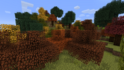 Autumntrees