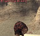Blighting Brand