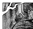 Great Boar of Lein
