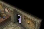 Secret Passage to King's Bounty Pub ffiv ios