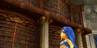 Library (Echoes of Time)