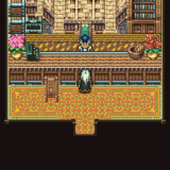 Jidoor's Item Shop (GBA).